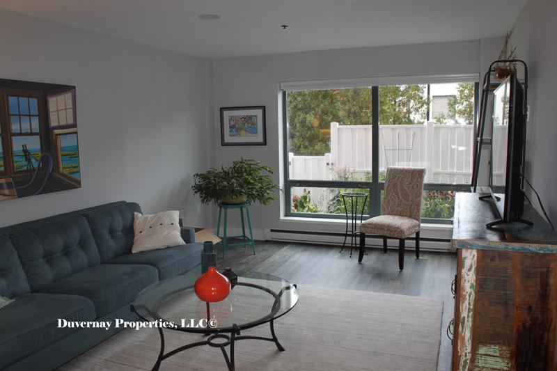 Unit 113 - Living area