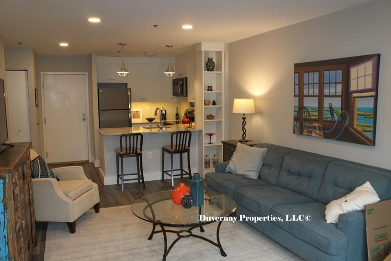 Unit 113- Living Room