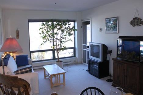 Unit 315 - Living Room